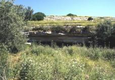 L'Ordine degli Architetti di Ragusa: difendiamo Fontana Nuova