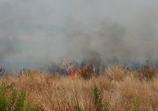 incendio dammusa 2