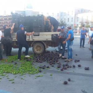 """Agricoltura. E' crisi nera. Confagricoltura Ragusa: """"Serve subito un piano di sostegno economico per le aziende serricole"""""""