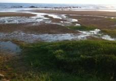 Scicli – Spiaggia Micenci: un esposto in procura. Danni all'ambiente e alla salute pubblica