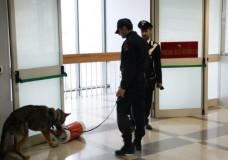 Allarme bomba al Tribunale di Ragusa, individuato il mitomane
