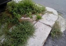 Comiso – Erba alta e spazzatura in alcuni quartieri