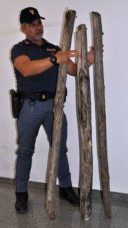 legno rissa