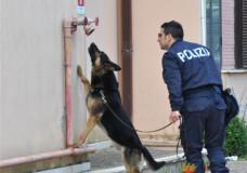 Droga. Operazione in tutta la provincia di Ragusa: 4 arrestati, 1 denunciato, 12 perquisizioni, sequestrati quasi 2.000 euro e oltre 500 grammi tra marijuana, hashish, cocaina ed eroina