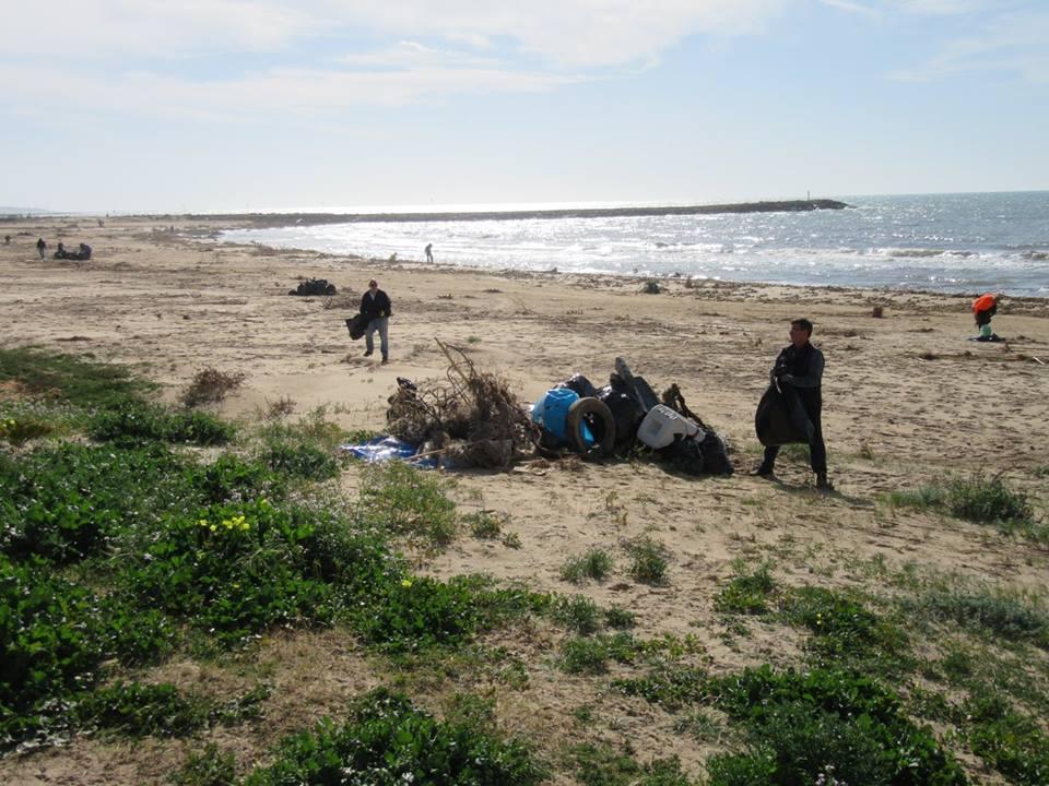 pulire spiaggia 5