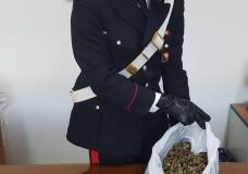 Pozzallo – Ancora un blitz antidroga dei Carabinieri. Arrestati 3 giovani con mezzo chilo di marijuana