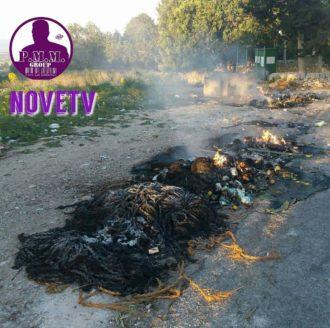 incendio-cassonetti-rifiuti-1