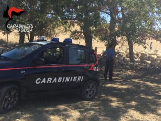 carabinieri-gregge