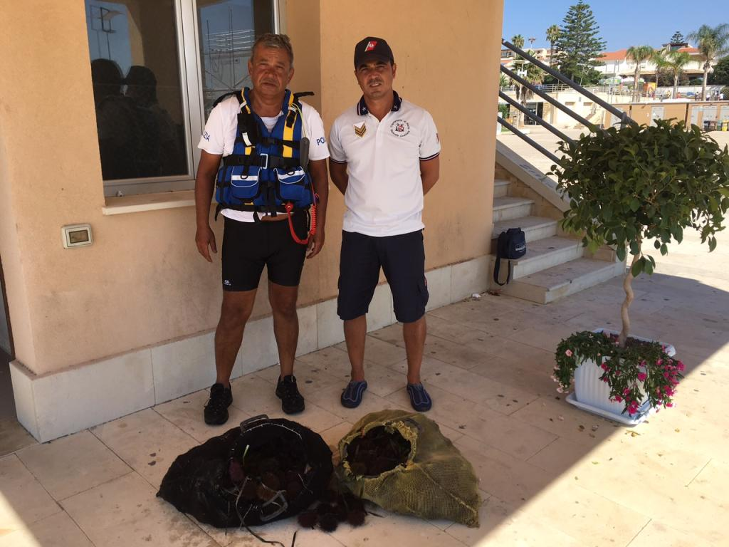 Pesca illegale: 500 ricci di mare sequestrati a Marina Di Ragusa